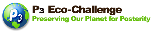 P3 EcoChallenge: Preserving our Planet for Posterity logo