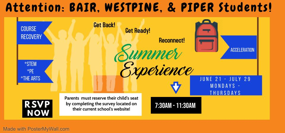 Summer Experience Flyer