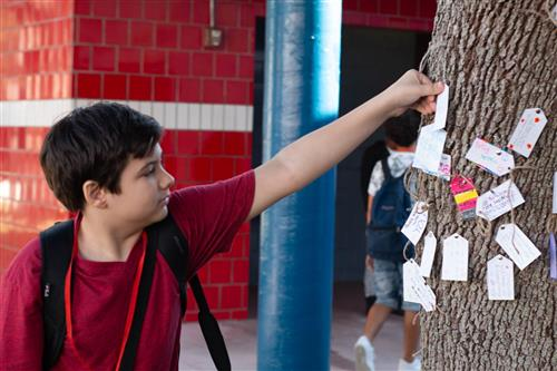 Placing a note on the Peace Tree