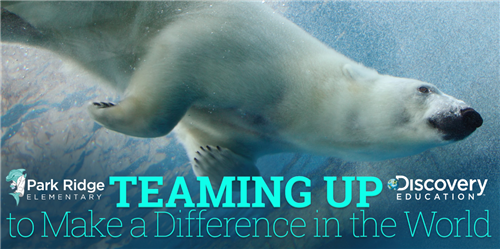 Polar bear swimming with Teaming Up to make a difference in the world text in a box