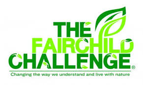 Words Fairchild Challenge in shades of green